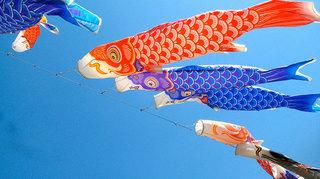 free-photo-kodomonohi-koinobori-sky.jpg